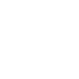 Texas TSA